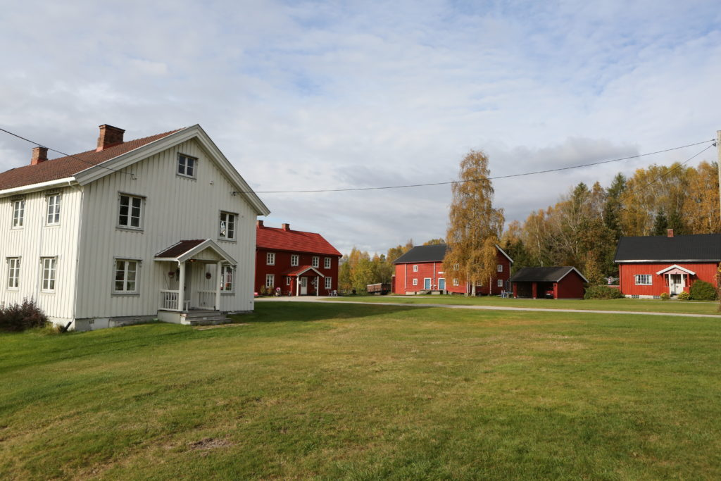 Ole Marius Sillerud, Otto Sillerud Melby gård på Flisa Familieskogbruket