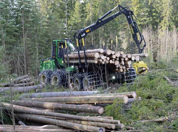 Lavere aktivitet i skognæringen