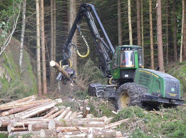 Senterpartiet ønsker en tiltakspakke slik at aktiviteten i skogen kan opprettholdes.