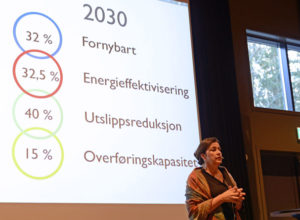 Stort behov for bioenergi i framtida