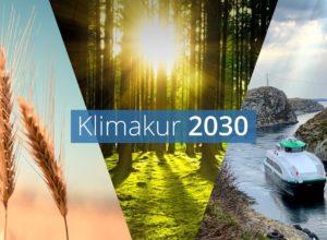 Klimakur 2030 viser at tiltak i skog er viktig for å oppfylle Norges klimaforpliktelser