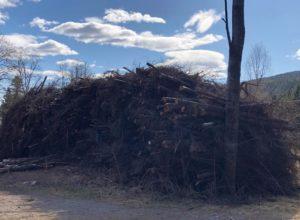 Økt bruk av biomasse er blant klimatiltakene med størst effekt