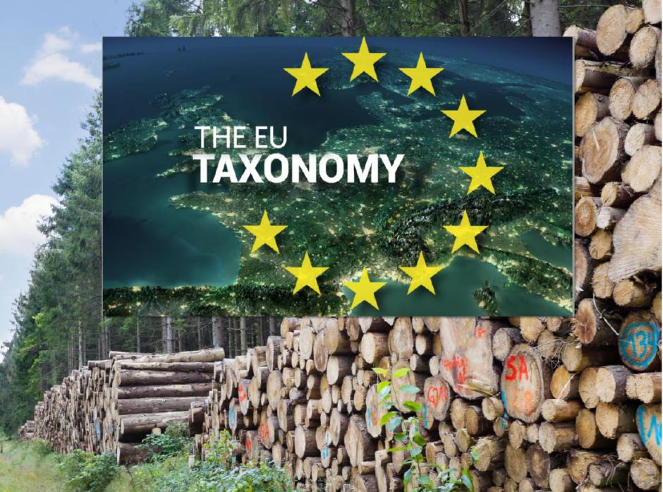 Webinaret «Hva betyr EU Taksonomi for norsk skog- og trenæring?» holdes tirsdag 22. juni fra klokka 12-13.
